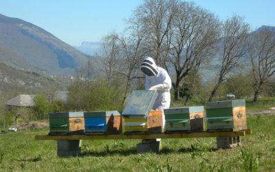 Un rucher école à L'Herbier de la Clappe