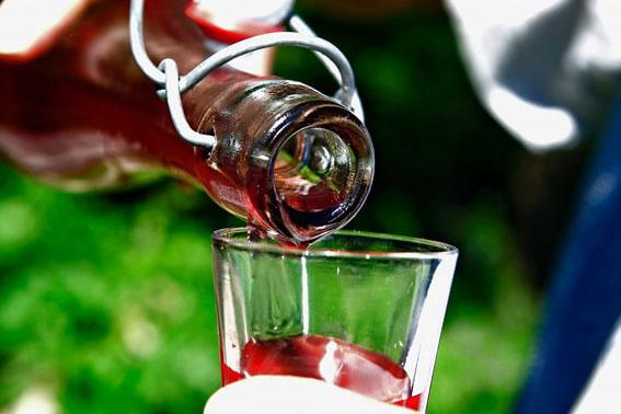 Dégustation d'apéritifs de L'Herbier de la Clappe