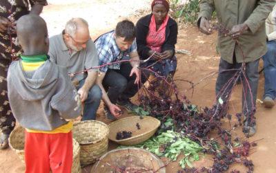Fermes du Monde au Burkina Faso et Bénin