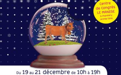 Marchés de Noël à Annecy et Chambéry